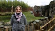 Jella Wauters mène pour la Pairi Daiza Foundation des recherches à la faculté Vétérinaire de l'Université de Gand. Ses recherches visent à développer un test qui permettra aux scientifiques, partout dans le monde, de prédire la période de chaleur de la femelle panda.