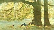 """Les 50 ans de l'album """"Plastic Ono Band – John Lennon"""""""
