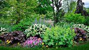 En province de Luxembourg, sept jardins vous ouvrent leur porte d'avril à novembre