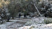 Balade sur la colline Fillipappou, au centre d'Athènes, le 08 janvier