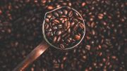 Quelles sont les réelles vertus du Café ?