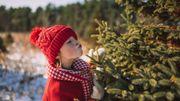 Cette année encore, la Ville de Soignies organise sa grande collecte de sapins de Noël à cheval !
