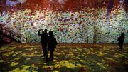 C'est aujourd'hui que démarre Gustav Klimt - The Immersive Experience