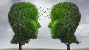 Les plantes possèdent-elles une véritable intelligence ?