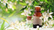 L'huile essentielle de Néroli, pour votre bien-être absolu