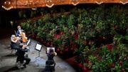 L'Opéra de Barcelone rouvre ses portes avec des plantes vertes en guise de premiers spectateurs