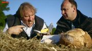 """À pleines dents"" : Gérard Depardieu croque le terroir"