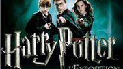 On a testé l'expo Harry Potter...