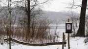 Paysage enneigé propice à la balade à Merkplas (Limbourg)