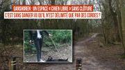 À Ganshoren, comment éviter les risques avec un parc pour chien libre non clôturé?