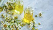 Allergie au pollen: ces huiles essentielles qui peuvent vous soulager
