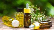 Piqûres d'insectes: 5 huiles essentielles pour vous soulager cet été