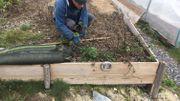 Le Printemps Grandeur Nature à la découverte d'une ferme spécialisée en permaculture en province de Liège !
