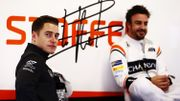 """Villeneuve : """"Tout ce que Stoffel a à faire, c'est battre Alonso"""""""
