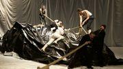 Transquinquennal & Moby Dick : Une fleur dans un harpon