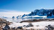 Nouvelle menace pour l'Antarctique: les espèces invasives apportées par l'Homme.