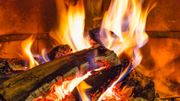 Contamination bois de chauffage : nos conclusions