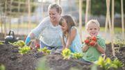 Le top 5 des fruits et légumes à cultiver chez soi
