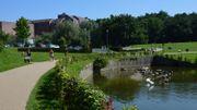 Louvain-la-Neuve: petite balade en solitaire autour du lac pour rêver