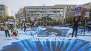 Un trompe-l'oeil géant à Bruxelles appelle à créer un sanctuaire marin en Antarctique