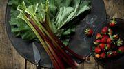 Recette de Candice : Croûte spéculoos – amandes aux fraises et à la rhubarbe