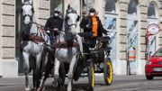 Les calèches de Vienne roulent à nouveau, pour livrer de la nourriture