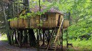 Vacances insolites : Des cabanes dans les bois façon Robinson