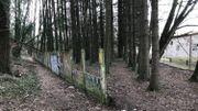Le bois à l'abandon derrière les anciennes usines Saint-Roch devenu un dépotoir et un lieu d'insécurité