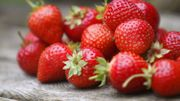 Comment bien choisir ses fraises ?
