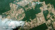 Pourquoi et comment une partie de l'Amazonie est-elle en train de brûler? Des feux surtout volontaires