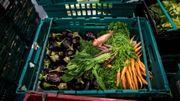 Robin Food ou comment des invendus deviennent de la soupe pour les plus démunis