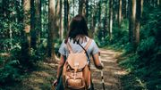 Les promenades en forêt: restez sur les sentiers pour protéger la nature