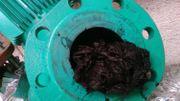 Les lingettes forment des amas qui bloquent les canalisations de la station d'épuration.