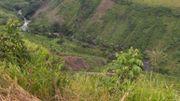 Congo RDC: Olivier Mushiete, Ingénieur agronome