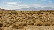 terres arides des USA