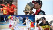 2017, une année sportive belge : l'UCI en 'noir, jaune, rouge', les Cats écrivent l'histoire, les Diables assurent
