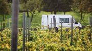Le Petit Futé Liège : les vignobles en Province de Liège