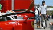 """Le halo, """"bling-bling"""" Lewis... Le meilleur de la F1 cette semaine"""