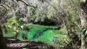 La beauté des parcs naturels est à couper le souffle