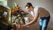Décoration et plantes d'intérieur : tout savoir quand on n'a pas la main verte