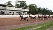 L'Hippodrome de Wallonie accueille 8 courses de trot aujourd'hui
