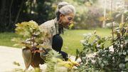 De la bouillie bordelaise pour votre jardin