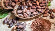 L'ingrédient insolite de Candice: la fève de cacao crue