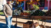 Dans de nombreuses villes du pays, le carriole du producteur est le seul centre d'achat de fruits et légumes locaux et de saison.