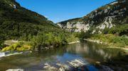 Lozère: 5 animaux insolites à observer dans le Parc National des Cévennes