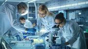 Ebola: des chercheurs espagnols travaillent sur un vaccin universel