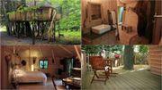 Vacances insolites: Des cabanes dans les bois façon Robinson