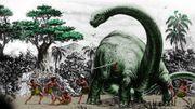 Le Mokélé-Mbembé est-il vraiment le dernier dragon ?