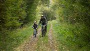 Le réseau vélo points-nœuds de la Wallonie picarde sera inaccessible pour certaines communes à partir de ce 16 novembre