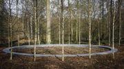Forêt de Soignes: cérémonie d'hommage avec des victimes et des proches
